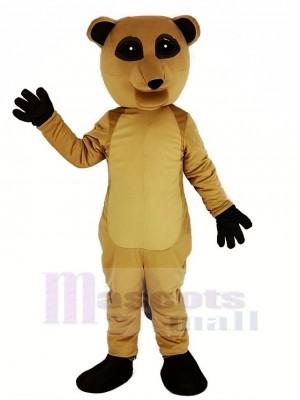 Suricate Mascotte Costume Animal