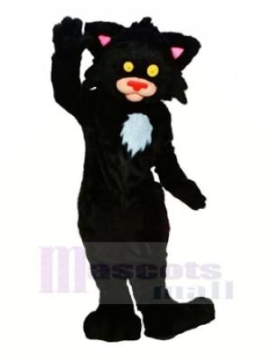 Noir Minou Chat Mascotte Les costumes Animal