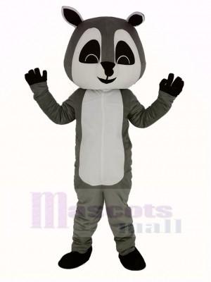 gris Raton laveur Mascotte Costume Adulte