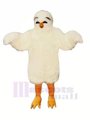 L'amour Oiseau Mascotte Les costumes Dessin animé