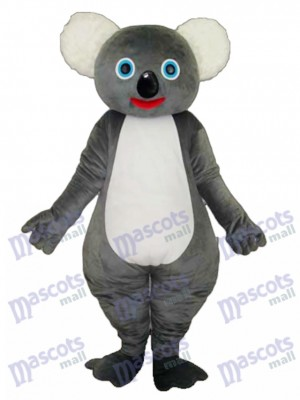 Koala mascotte costume adulte Animal
