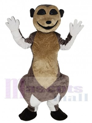 Suricate costume de mascotte