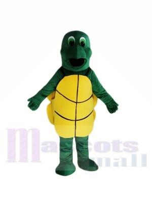 Petits costumes de mascotte tortue verte