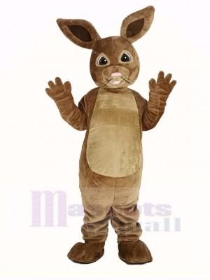 Peter lapin Mascotte Costume
