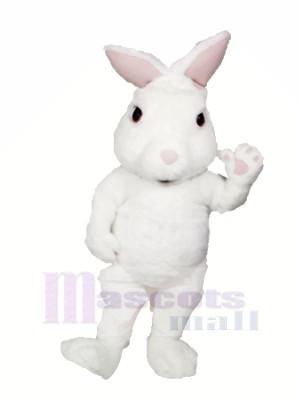 blanc Flou lapin Mascotte Les costumes Dessin animé