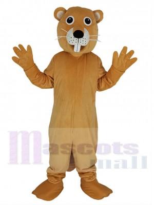 Castor costume de mascotte