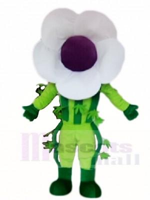 blanc Fleur Mascotte Les costumes Plante