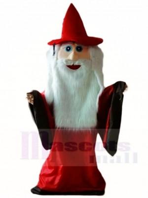 sorcier Magicien Mascotte Les costumes Halloween