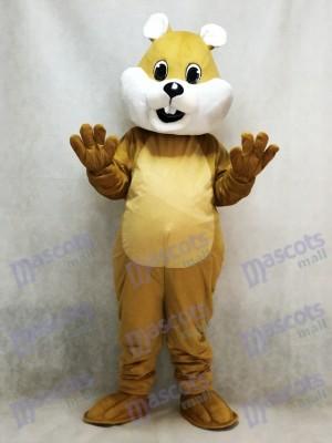 Costume de mascotte écureuil potelé avec animal ventre blanc