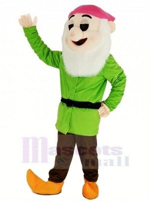 Nains avec vert Manteau Mascotte Costume