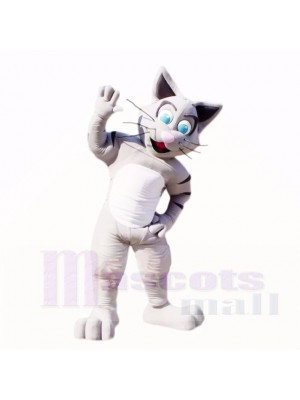 Amical gris Chat Costumes De Mascotte Dessin animé