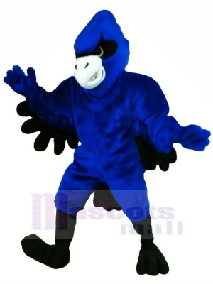 Bleu Geai avec Noir Ailes Mascotte Les costumes