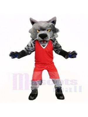 Chat de sport avec une chemise rouge école de costumes de mascotte