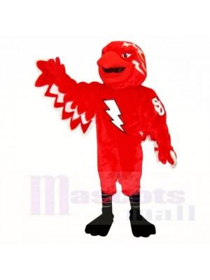 École des costumes de mascotte St John Thunderbird