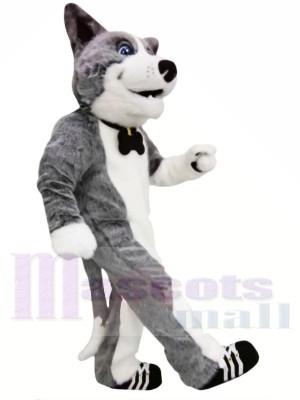 Mignonne Chien gris Costumes De Mascotte