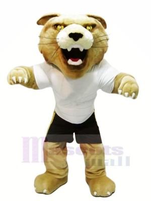 Féroce Chat sauvage avec blanc T-shirt Mascotte Les costumes