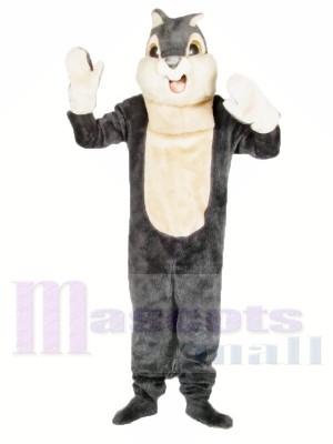 Écureuil gris mignon Costumes De Mascotte