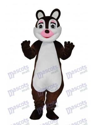 Mignonne Peu Écureuil Adulte Mascotte Costume Animal