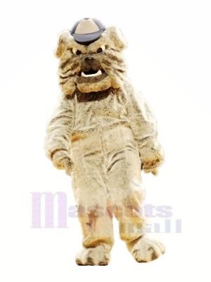 École Fort Bouledogue Mascotte Les costumes Dessin animé
