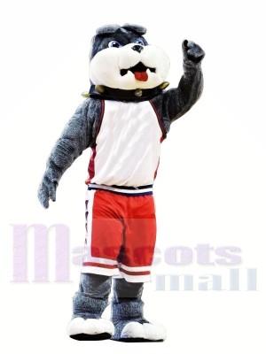 Mignonne Collège Bulldog Costumes De Mascotte