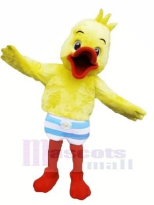 Velu canard Mascotte Les costumes Dessin animé