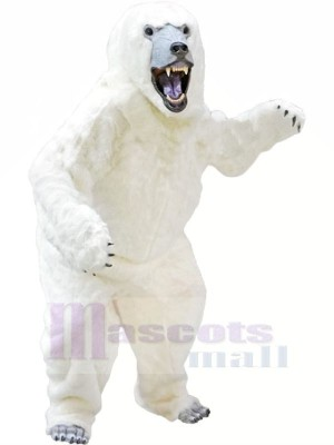 Polaire blanc Ours Mascotte Les costumes Animal