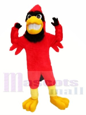Fort rouge Cardinal Mascotte Les costumes Animal