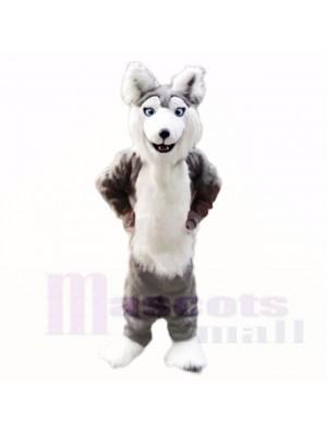 gris Rauque Chien Costumes De Mascotte Dessin animé