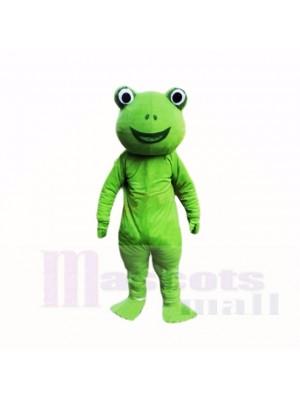 vert La grenouille Costumes De Mascotte Dessin animé