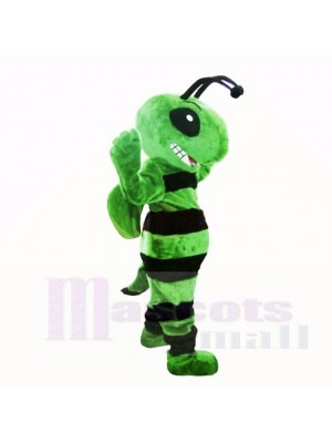 Amical vert abeille Costumes De Mascotte Adulte