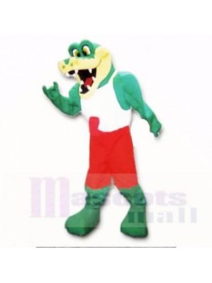 Amical Poids léger Gator avec Rouge et blanc Chemise Costumes De Mascotte École