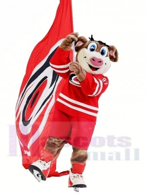 Ouragans de la Caroline Orageux Costume de mascotte