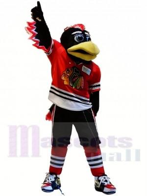 Blackhawks de Chicago Tommy Hawk Costume de mascotte