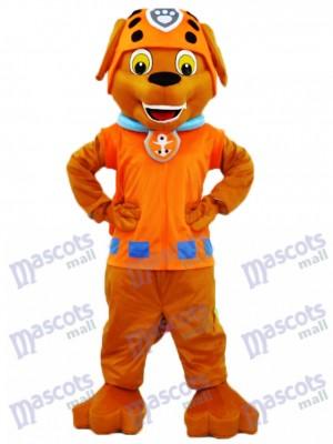 La Pat' Patrouill Sauveteur d'eau de chocolat Labrador Pup Paw Patrol Zuma Costume de mascotte de chien