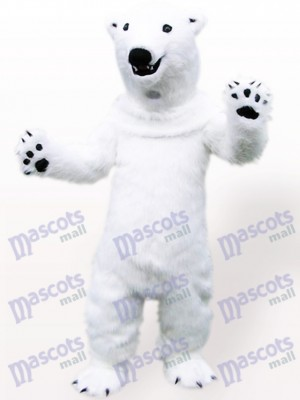 Costume de mascotte adulte animal ours polaire