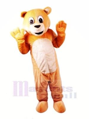 Mon chéri Ours Mascotte Les costumes Dessin animé