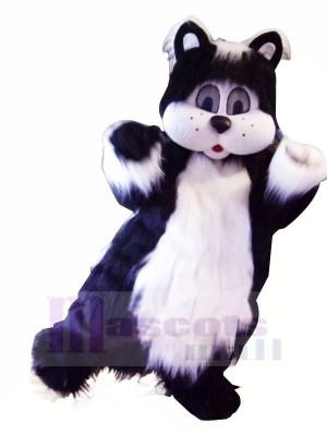 Noir et blanc Chat avec Gros Les yeux Mascotte Les costumes Animal