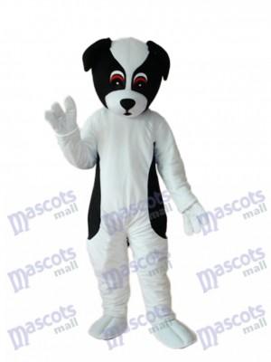 Mascotte de chien coloré Costume adulte Animal
