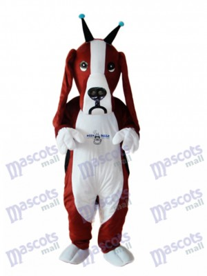 Mascotte de chien de Basset révisée Costume adulte