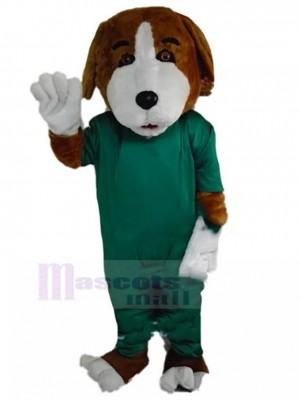 Costume de mascotte de chien beagle marron et blanc avec animal de robe chirurgicale