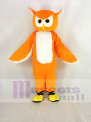 Orange Ollie Hibou Mascotte Costume École