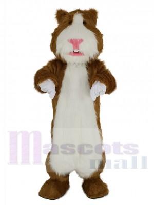 Hamster maskottchen kostüm
