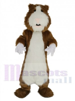 Hamster costume de mascotte