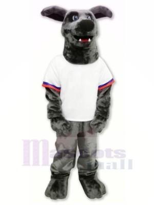 Whippet Chien dans T-shirt Mascotte Les costumes Dessin animé