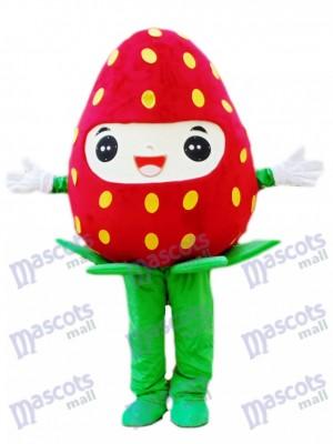 Costume de mascotte aux fraises