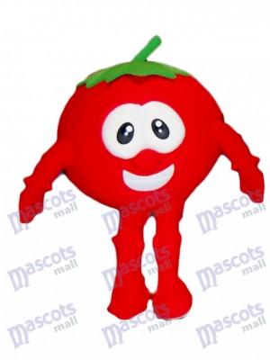 Bob le costume de mascotte de tomate de VeggieTales Cartoon
