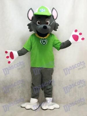 Paw Patrol Ecologie Pup Costume de mascotte Rocky Anime