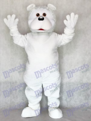 Costume mascotte mignonne d'ours blanc adulte Animal