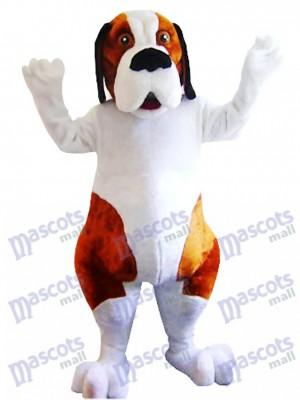 Costume de mascotte chien blanc et marron Saint Bernard