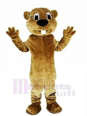 marron Castor Mascotte Costume Animal Adulte